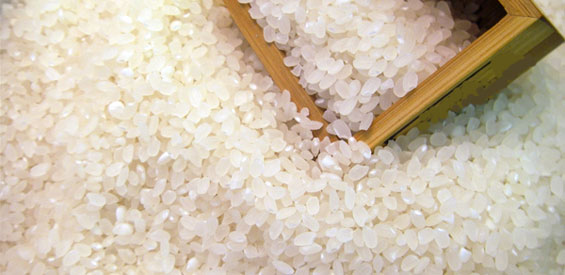 rice06