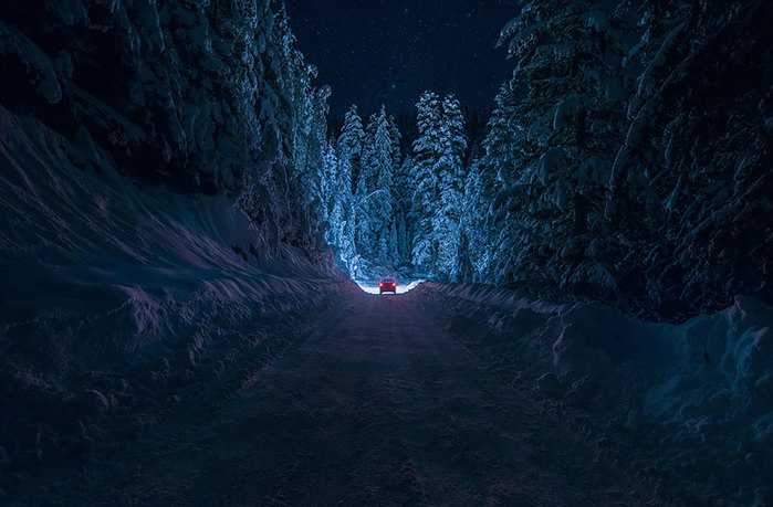 beautiful-mysterious-forests-2__880