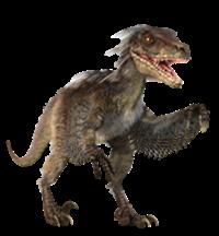 Velociraptor_infobox
