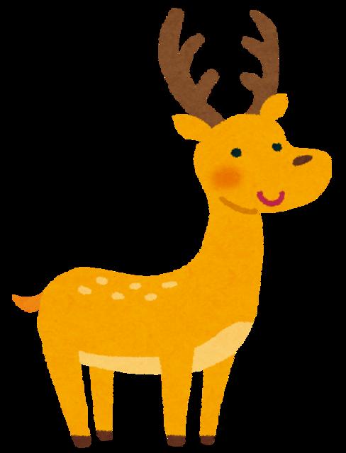 animal_deer (1).png