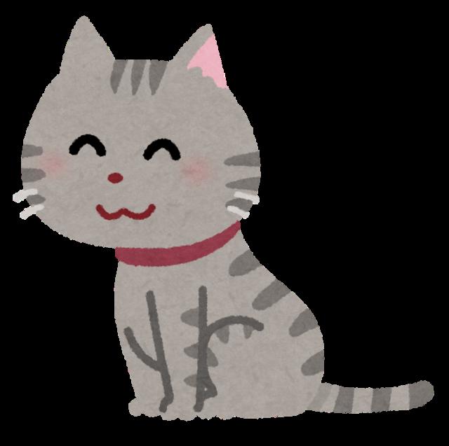 pet_cat_sit (1).png