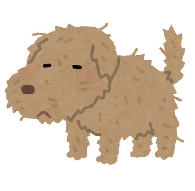 pet_dog_boroboro.png